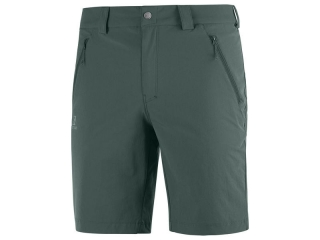 SALOMON WAYFARER LT SHORT M GREEN GABLES
