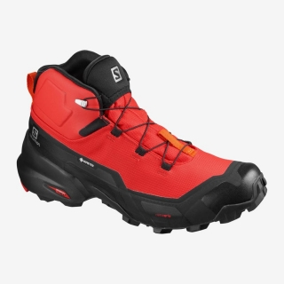SALOMON CROSS HIKE MID GTX GOJI BERRY