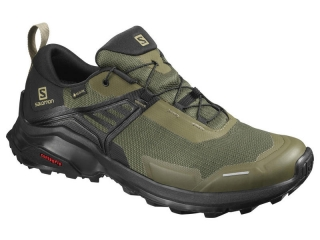 SALOMON X RAISE  GTX  GRAPE LEAF