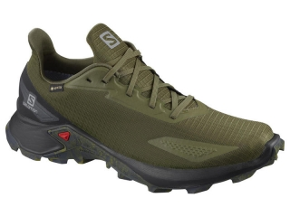 SALOMON ALPHACROSS BLAST GTX  DARK GREEN