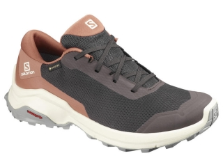 SALOMON X REVEAL GTX W SHALECEDAR