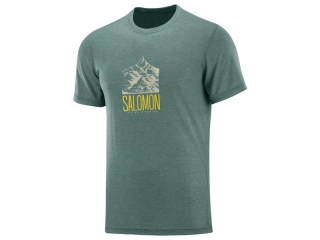 SALOMON EXPLORE GRAPHIC SS TEE M Balsam G